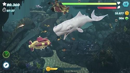 Hungry Shark Evolution [Mod] – Vô Hạn Tiền, Kim Cương